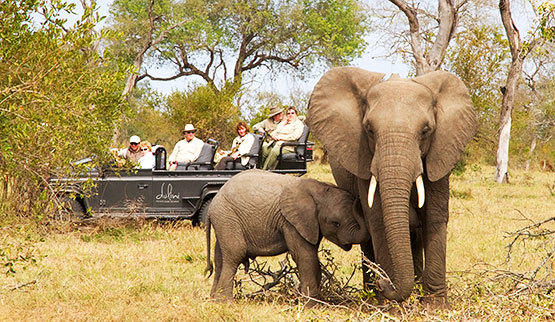 Game drive in Dulini Game Reserve.